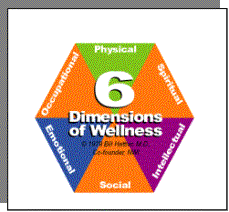 While these dimensions focus on what is considered a holistic approach ...